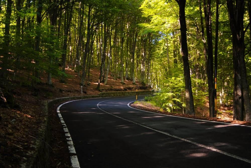 Monte Amiata strada